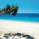 ein weißer Strand in Griechenland mit blauem Meer und einem zärtlichen Baum